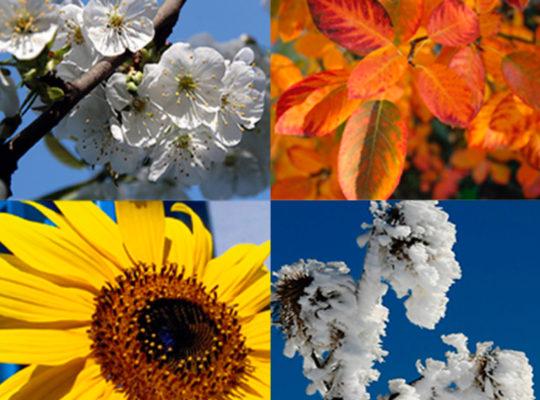 Vier Jahreszeiten der Rhön